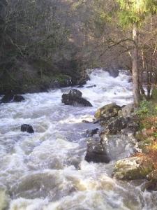 falls at river braan